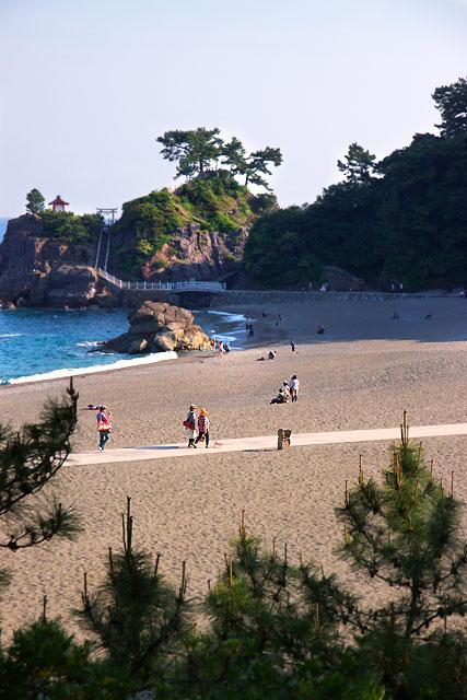 桂浜-桂浜.jpg