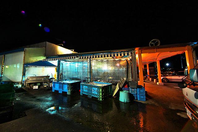 うずしお-水槽2.jpg